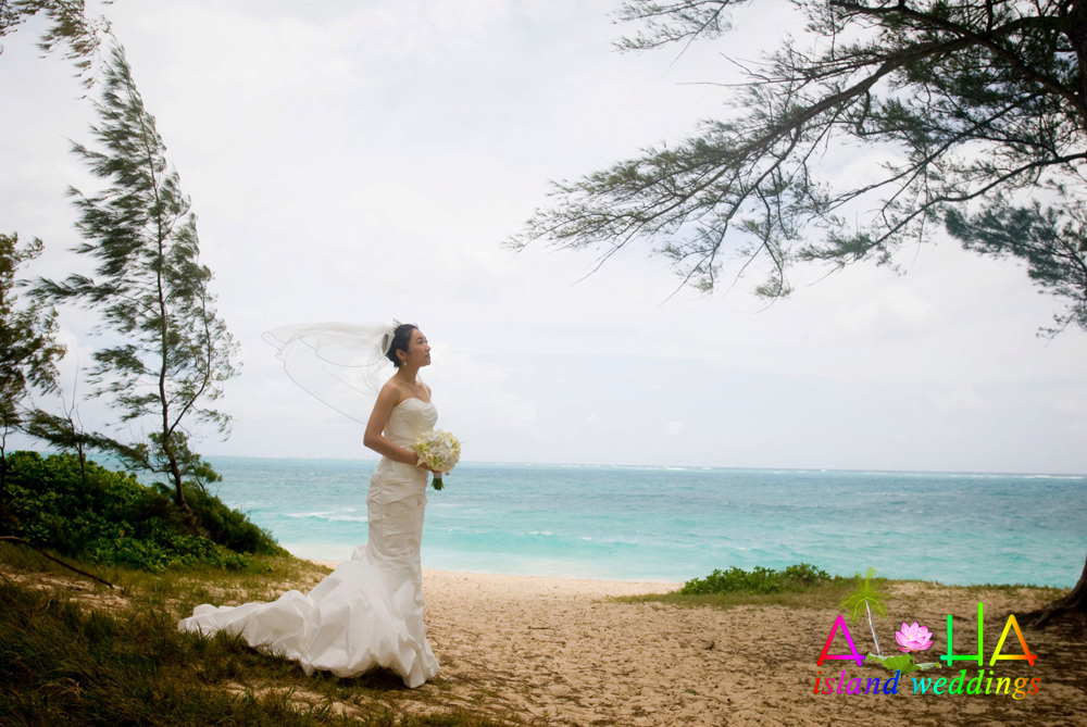 viel of the bride blowing in the wind on the beach at Waimanalo on Oahu Hawaii