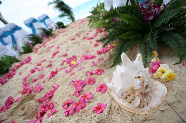 Conch shell laying on the sand with pink plumeria flowers