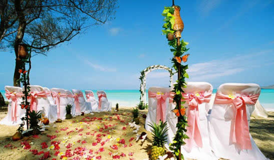 beach side ceremony setup in Hawaii with light pink sashes and pineapples with tiki torches and butterflies