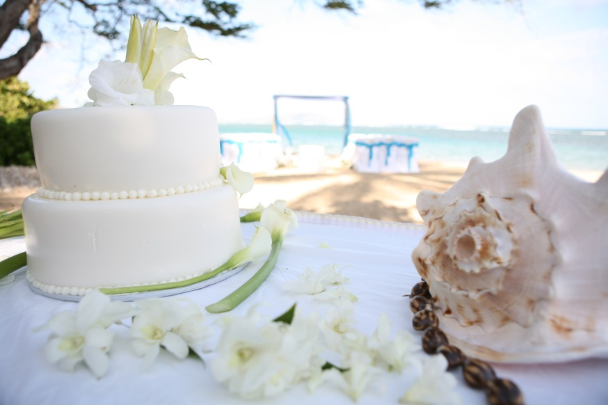 conch shell with a all white weding cake
