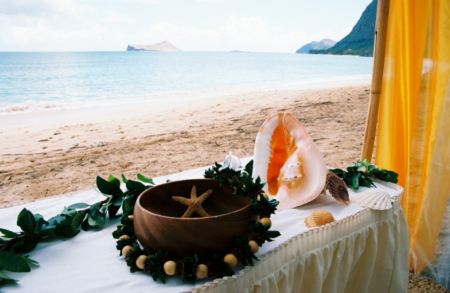 conch shell with hawaiian wooden bowl and a starfish with Maile tea leaf lei