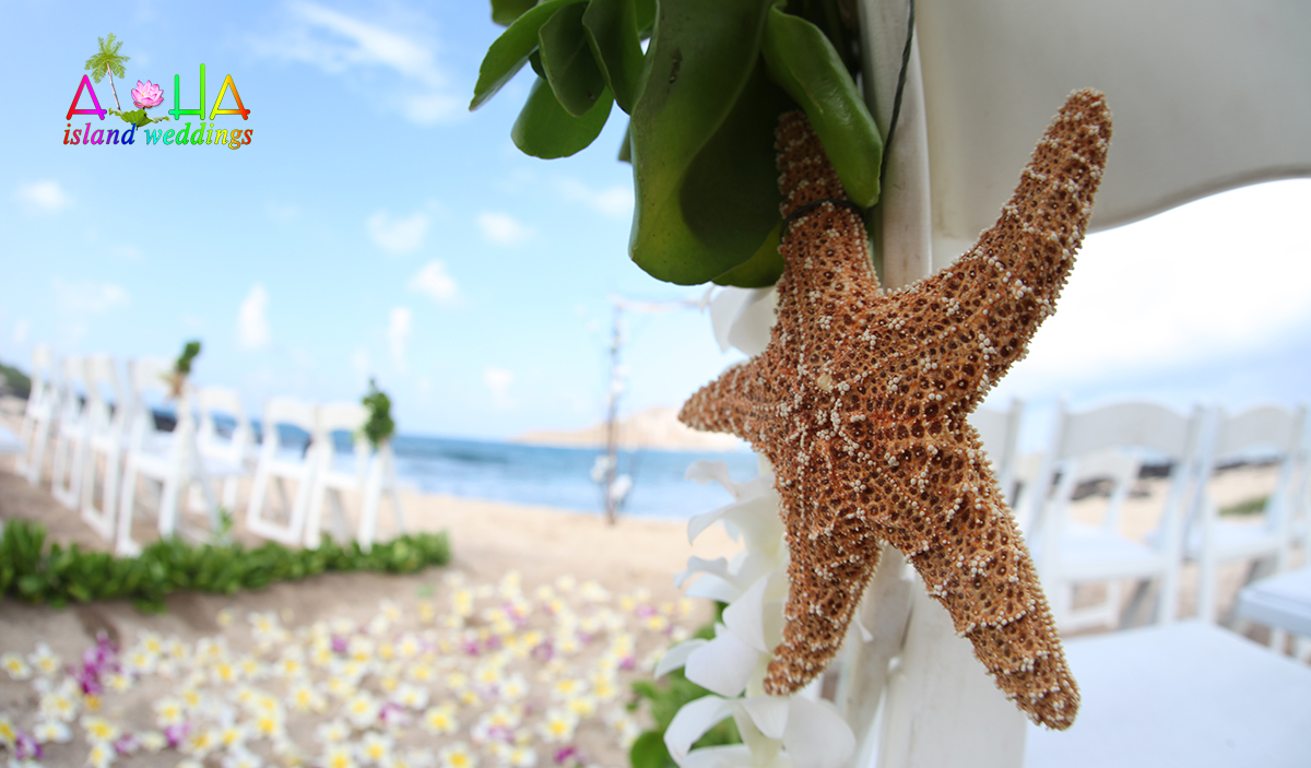 Large star fish from the sea on the white folding chair at beach wedding