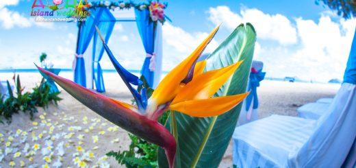 Beach design by aloha island weddings of orange yellow and blue